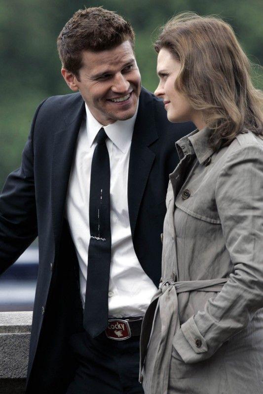 TV series, Bones.  Brennan & Booth