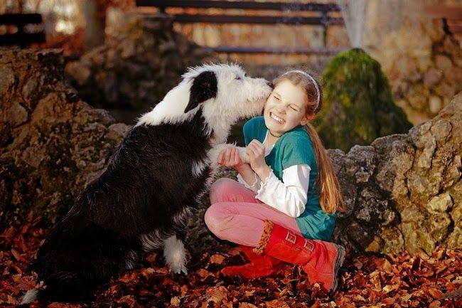 #Opieka nad psem mieszkającym na dworze