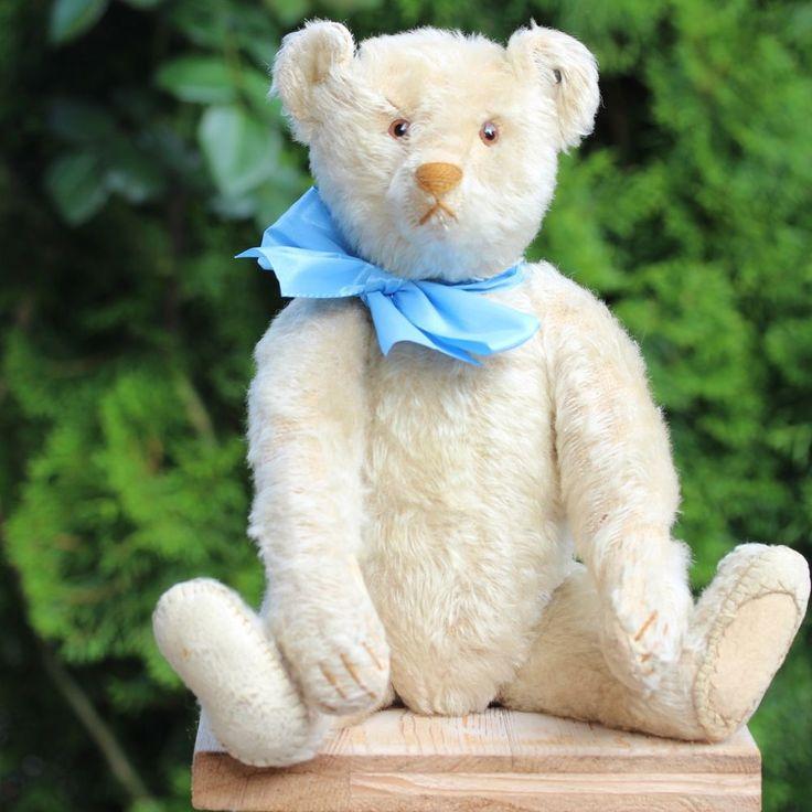 WHITE STEIFF TEDDY BEAR 1920s w STEIFF BUTTON LONG F - VERY RARE ANTIQUE OURS