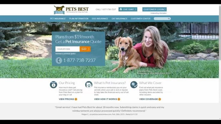 (adsbygoogle = window.adsbygoogle || []).push();            (adsbygoogle = window.adsbygoogle || []).push();  A Review of the Pets Best Pet Insurance Online Quote Tool At http://www.houndabout.com we are strong advocates for ensuring your pet can always get the best and most...
