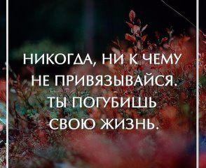 (69) Одноклассники
