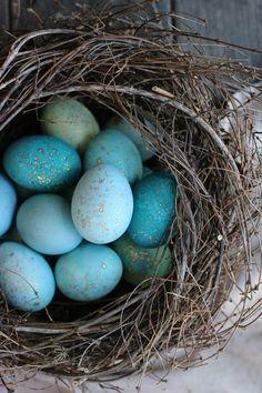 DIY: naturally dyed robin egg blue Easter eggs