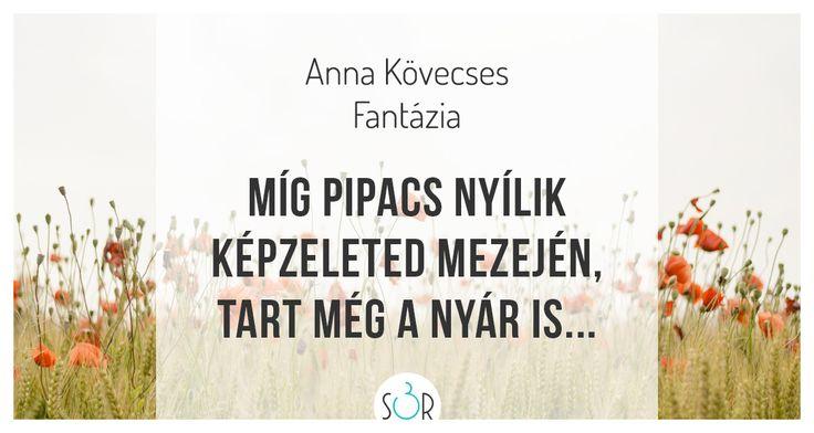 #haiku #vers #pipacs #képzelet #optimizmus