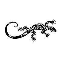 Salamandre,epaule droite
