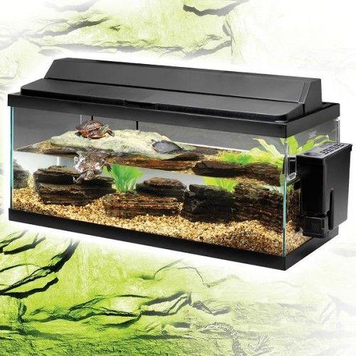 Os aquários para tartarugas aquáticas devem ser grandes e espaçosos.                                                                                                                                                                                 Mais
