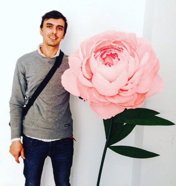 Papel flor peonía flores de papel gigantes por MoniquePaperArt