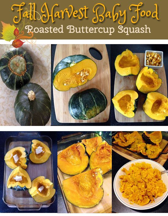 Fall Harvest Baby Food Buttercup Squash With Images Baby