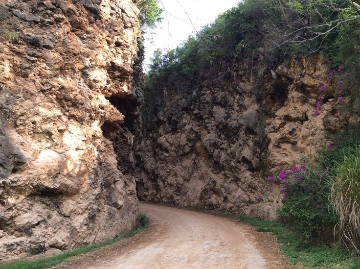 Mangaia - the Cutting. Explosives were used in 1951 to create a road through the makatea.