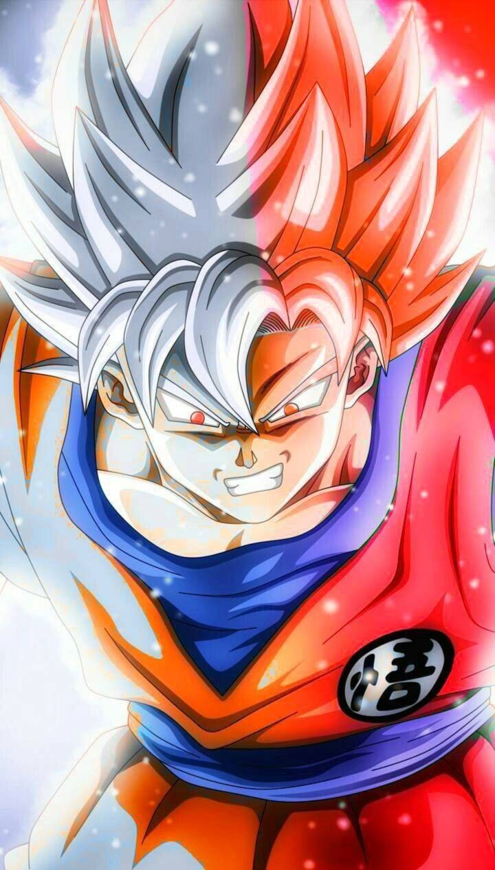 Goku Ultra Instinct God Dragon Ball Super Dragon Ball