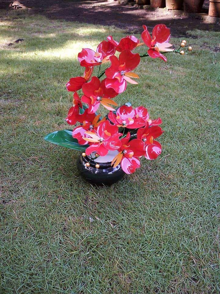 Gambar Bunga Dari Botol Plastik Bunga Gambar Pot Bunga