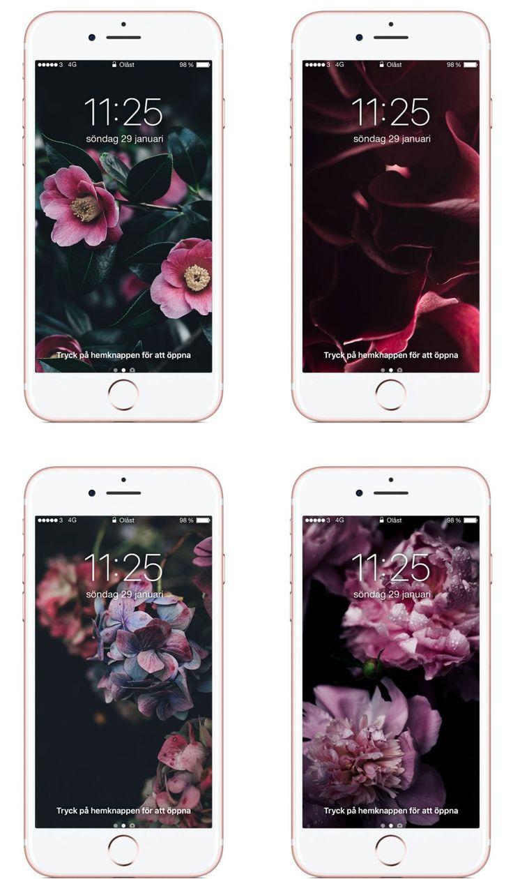 iPhone Wallpapers : Dark flowers