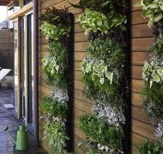Attractive way to keep herbs