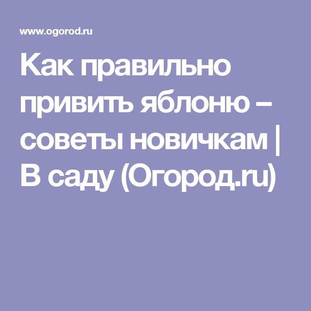 Как правильно привить яблоню – советы новичкам | В саду (Огород.ru)