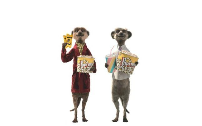 SA businessman Douw Steyn to list R40bn UK business on London stock market BGL, the company behind Comparethemarket who uses animated meerkats to advertise their products, looks set to be listed on the UK Stock Exchange, despite uncertainty after Brexit. http://www.thesouthafrican.com/sa-businessman-douw-steyn-to-list-r40bn-uk-business-on-london-stock-market/