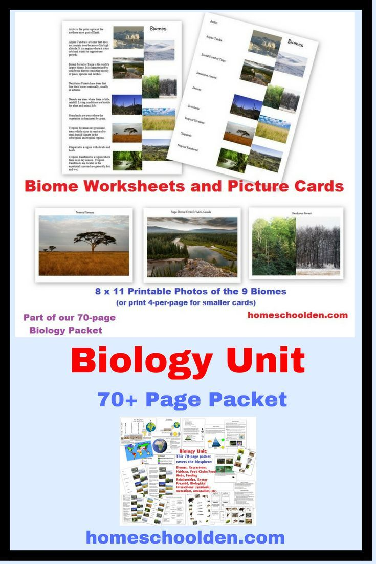 Biology Unit This 70 Page Packet Covers The Relations Of Organisms To One Another And To Their Physical Sur Biology Units Biomes Homeschool Science Curriculum