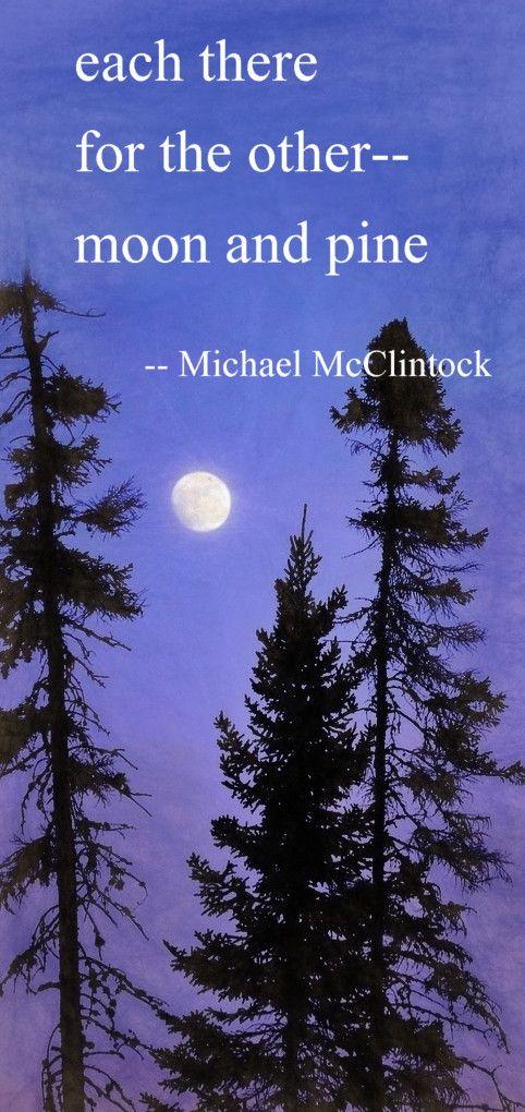 Haiku poem: each there-- by Michael McClintock.