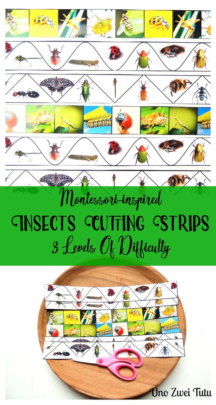 These beautiful Montessori inspired insects cutting strips are a fun way to practice cutting with toddlers and preschoolers. Free printable with 3 levels of cutting practice.