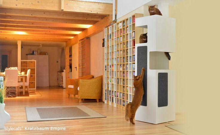 die besten 25 kratzbrett ideen auf pinterest kratzbrett katze haustiert r und franz sische. Black Bedroom Furniture Sets. Home Design Ideas