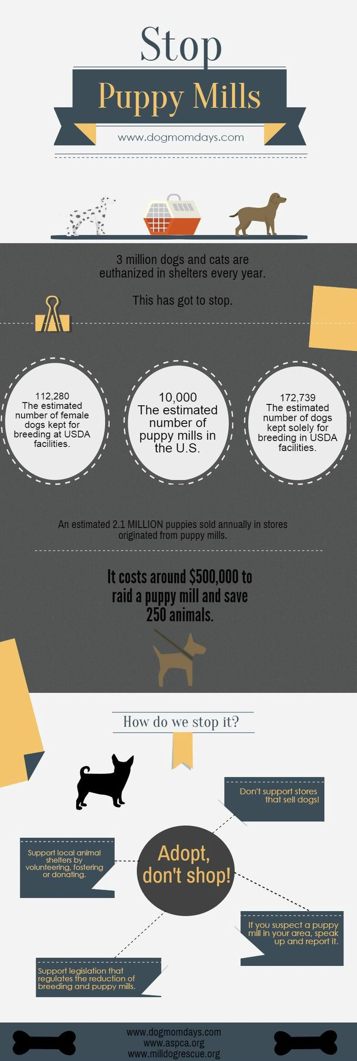 Stop puppy mills! Adopt, don't shop! Puppy mill facts and statistics. Animal Rescue | Dog Rescue | Dog Adoption | Rescue Mom