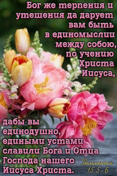 Цитаты из библии в картинках божьих благословений пожелания, поздравления