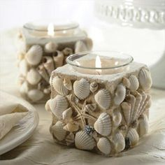 DIY Seashell Decoration Ideas | NewNise