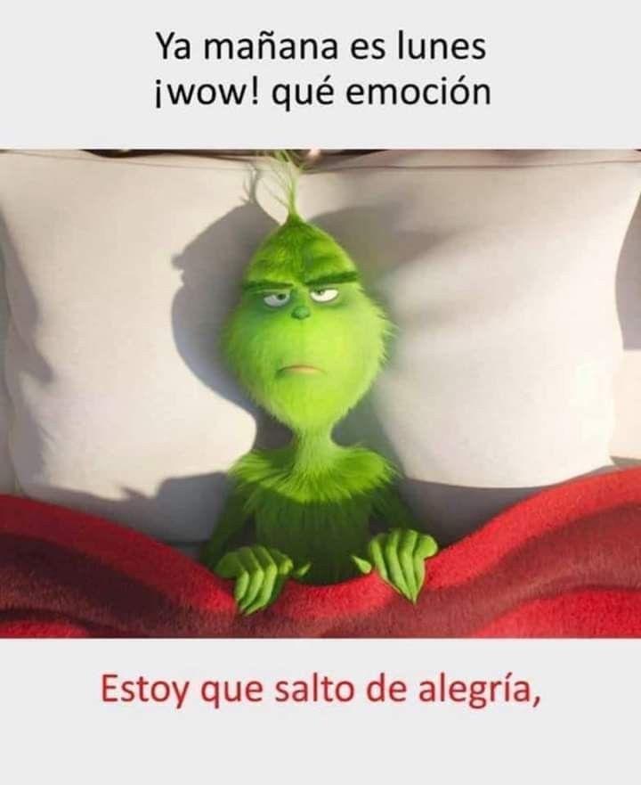Pin By Jimmygarcia On Entremeses Ricos Funny Good Morning Memes Morning Memes Grinch
