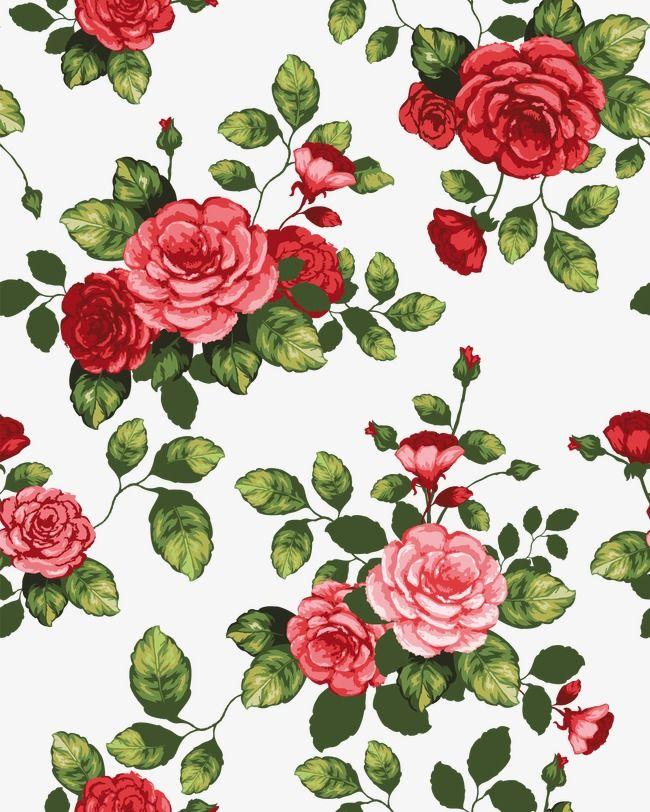 Beautiful Flowers Cartoon Border Shading, Cartoon Vector