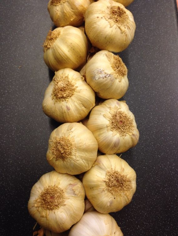 Delicious Oak Smoked Garlic out of the smokehouse today. Perfect in your pasta dishes or roasted on bruschetta. Mmmmmmmmmm
