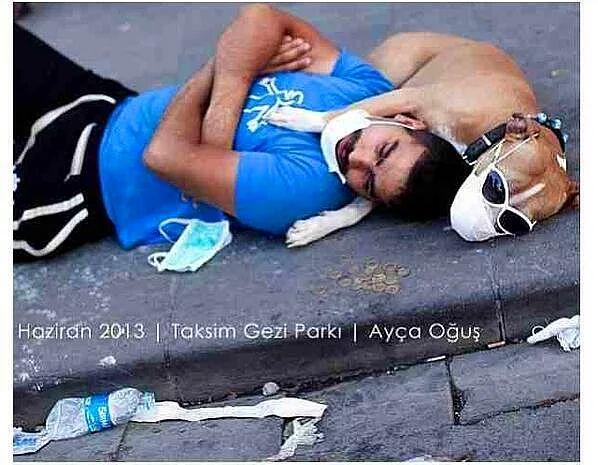 Gezi Parkı Eylemlerinden Gülümsetecek ve Yüreğinizi Isıtacak Fotoğraflar