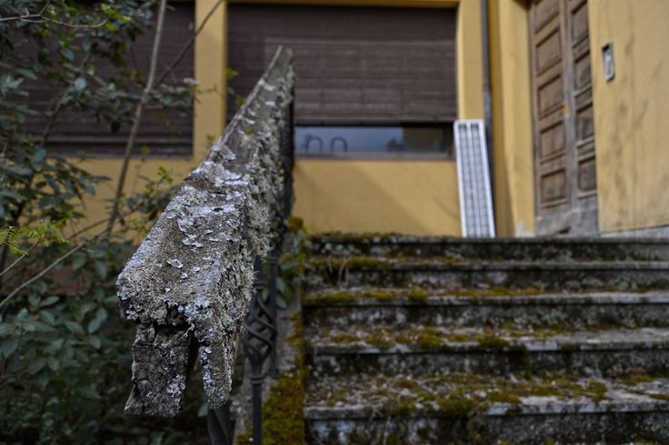 La natura riconquista  #urbex #edificidismessi #urbanarcheology