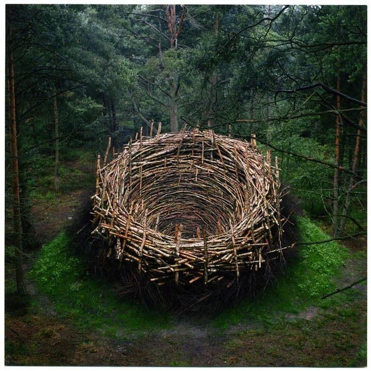 Nils-Udo   - 21 Unforgettable Examples of Land Art - My Modern Metropolis