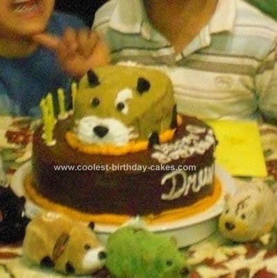 Best Zhu Zhu Pet Birthday Cakes Images On Pinterest Zhu Zhu - Hamster birthday cake