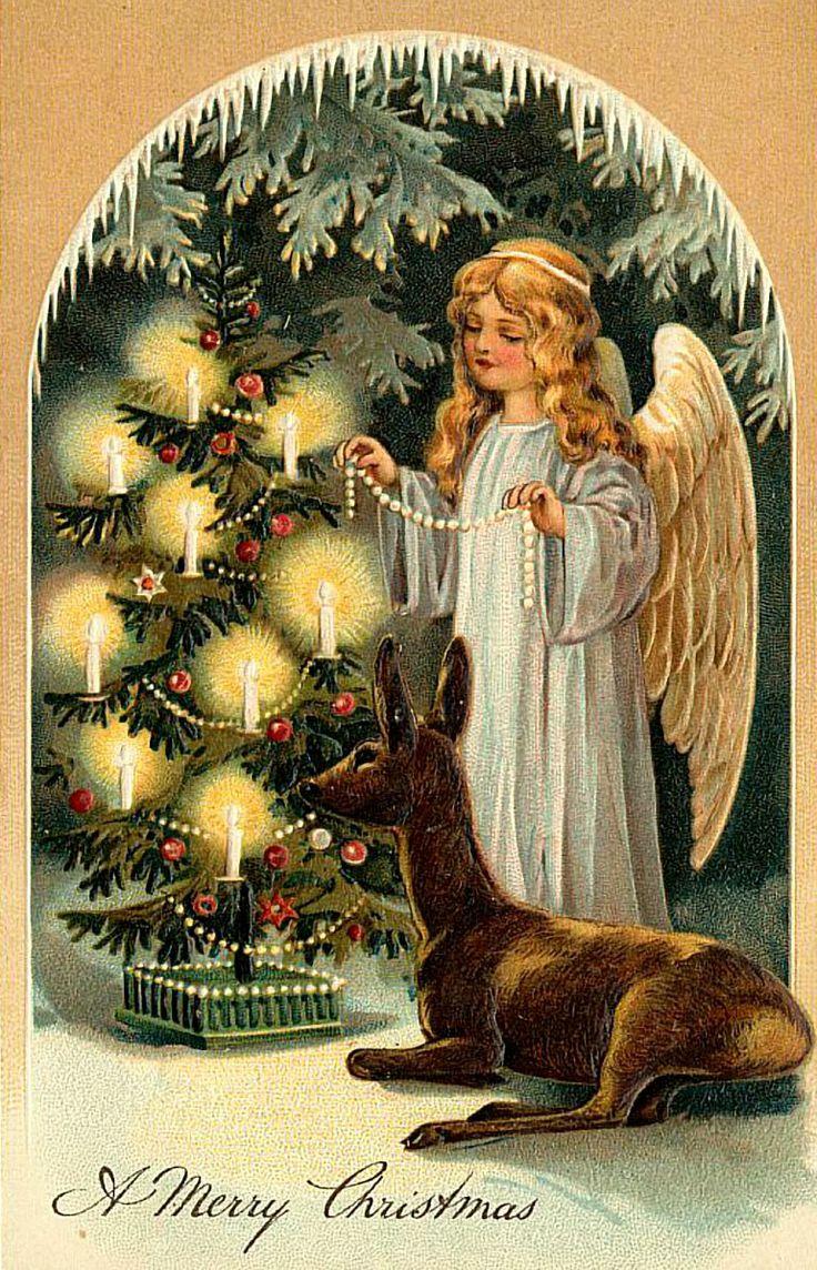 Best Value Christmas Trees