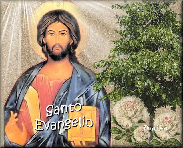 Jesús el Tesoro Escondido: Santo Evangelio 12 de Enero 2016