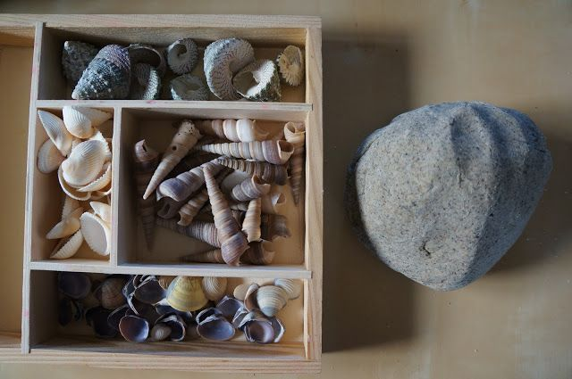 "Sand Play Dough & Shells from Playful Learning in the Early Years ("",)"
