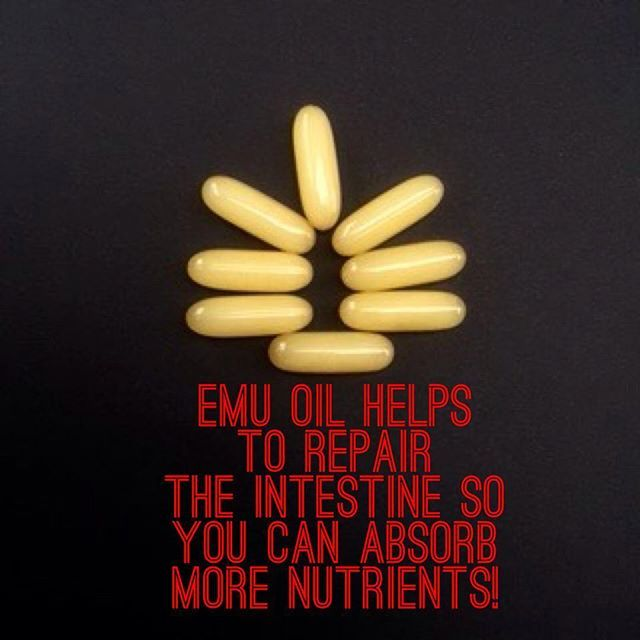 EMU OIL**Research at the University of Adelaide has supported emu oil's traditional anti-inflammatory properties and shown it can help repair damage to the bowel. Studies showed that Emu Oil - accelerates the repair process by stimulating growth of the intestinal crypts, the part of the intestine that produces the villi that absorb food. This is beneficial for people with disorders of the gastrointestinal tract, such as the inflammatory bowel diseases, irritable bowel syndrome, leaky gut…