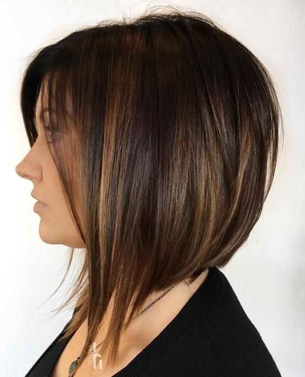50 Chocolate Brown Hair Color Ideas For This Year In 2020 Hair Styles Thick Hair Styles Angled Bob Haircuts