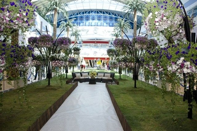 See an exhibition of indoor blossoms at Marina Mall and hear a discussion 'world literature'