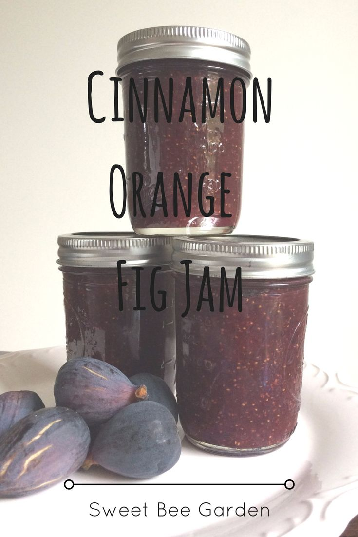It's fig season on my homestead, which means its time for fig jam! Keep reading for my Cinnamon, Orange & Fig Jam recipe!