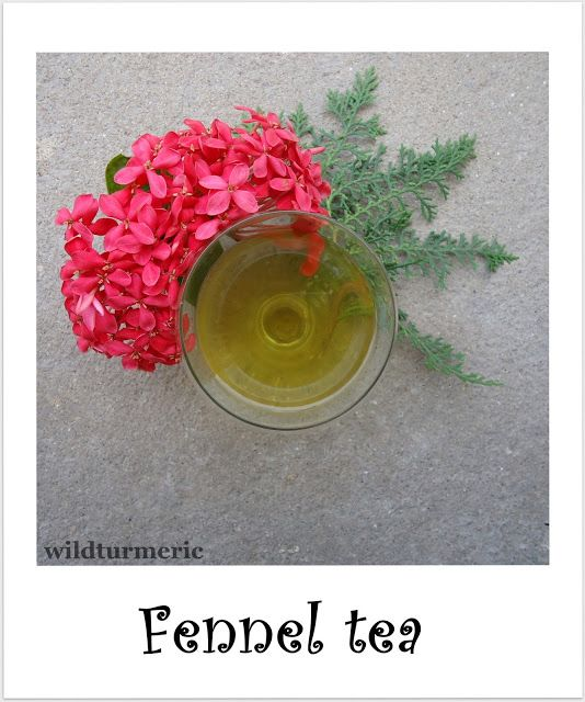 how to prepare fennel tea