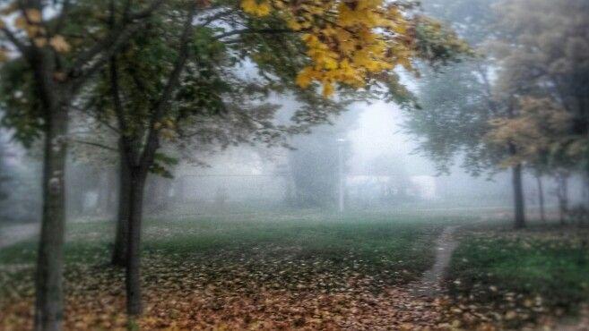 Fog , Hungary