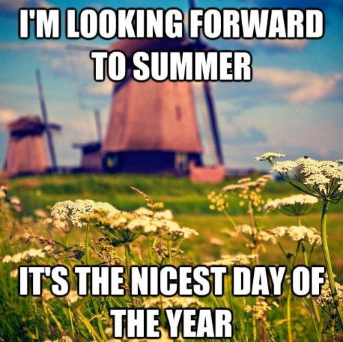 Summer in the Netherlands - http://funnypicturequotes.com/summer-in-the-netherlands/