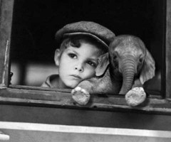 just let me have onee: Picture, Best Friends, Baby Elephants, So Cute, Pet, Boys, Photo, Kid, Animal