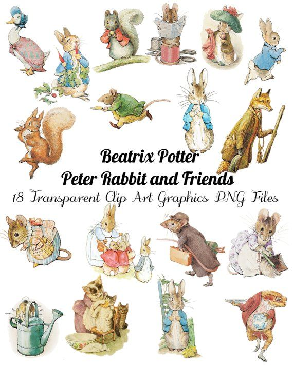 18 Peter Rabbit And Friends Clip Art Transparent Png Files Etsy In 2021 Peter Rabbit And Friends Peter Rabbit Illustration Beatrix Potter Illustrations