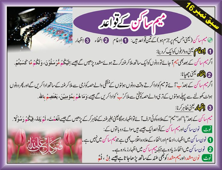 Learn read quran cd urdu