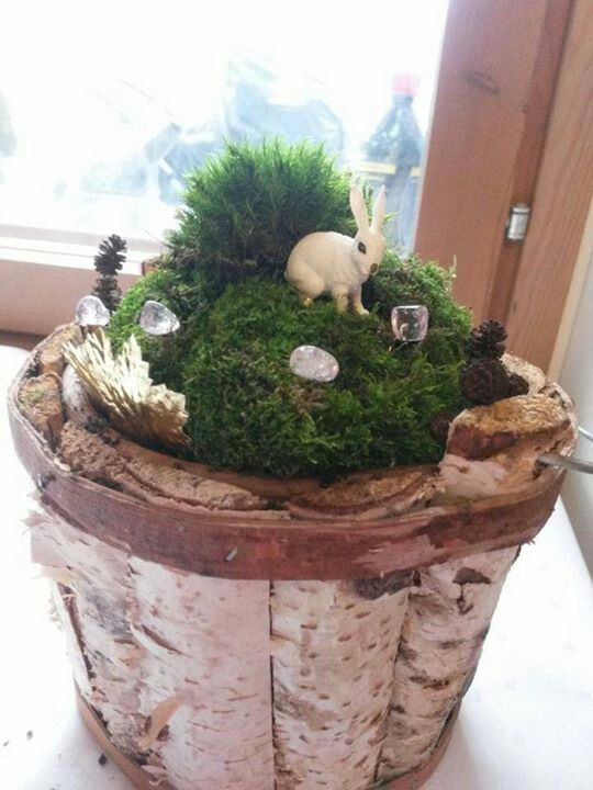 Bunny in a basket with moss