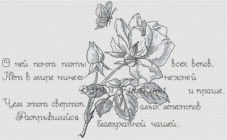 Схема для вышивания Ушакова Дарья (brightangel) #8491 (большая картинка)