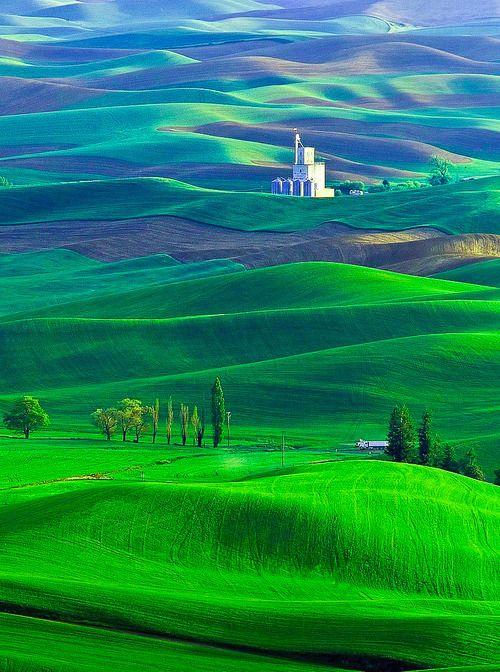 The Palouse region, Washington State, USA