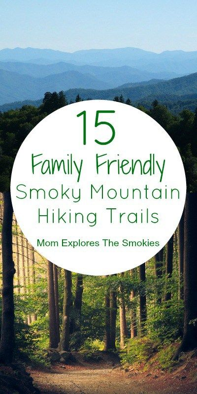 These great Smoky Mountain hiking trails are totally kid friendly and family friendly!