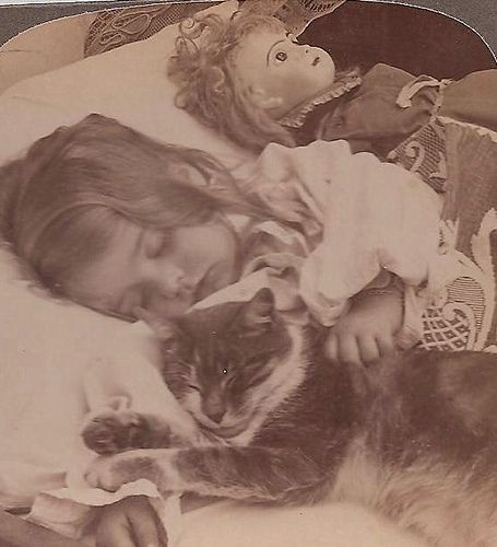 Sleeping girl with Jumeau and kitty.  1890's  (The doll has insomnia or someone messed with her sleep eyes)